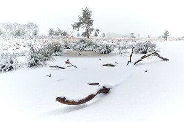 Sneeuw op de heide van Hoog Buurlo van Cor de Hamer