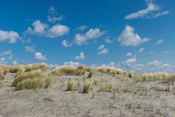 schapenwolken boven de duinen