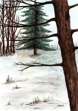 Waldspaziergang von Sandra Steinke