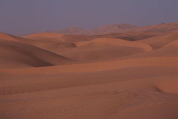Sahara 7