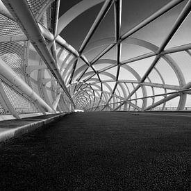 (fiets) brug 'Groene verbinding' zwart/wit perspectief van Manon Ruitenberg