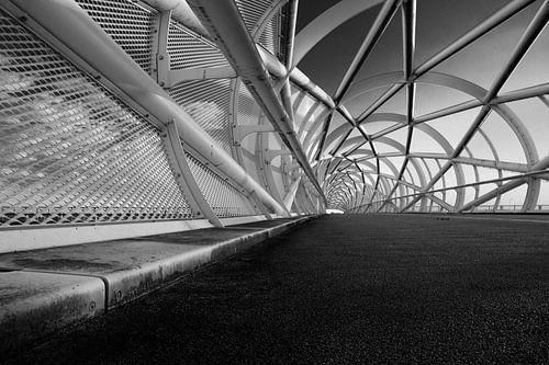 (bicyclette) bridge'Green connection' perspective noir et blanc sur Manon Ruitenberg