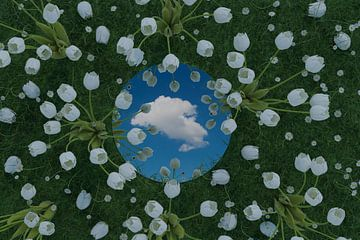 Le miroir rond reflète un nuage blanc unique et se trouve sur une prairie verte entourée de tulipes  sur Besa Art