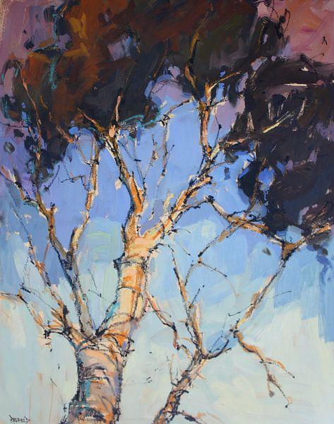 Birch Tree van Cathleen Rehfeld