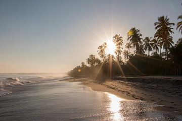 Opkomende zon op het strand met palmbomen in Colombia, Zuid Amerika von Romy Wieffer