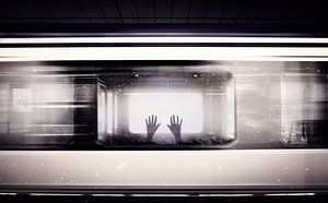 Society van