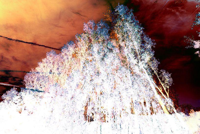 Gestörte Landschaft #006 von Peter Baak