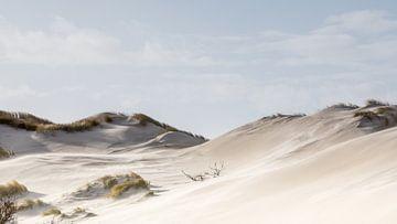 De Hollandse duinen van Peter Korevaar
