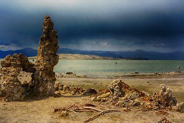 Mono Lake, Amerika von Ton Bijvank