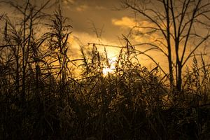 Zonsondergang - Mysterieuze manieren