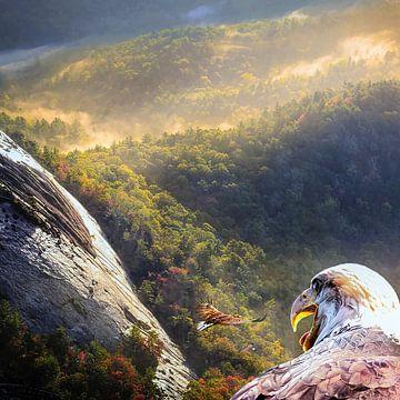 Im Tal der Adler von Uwe Frischmuth