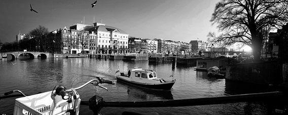 Amsterdam meeuwen (zwart-wit)
