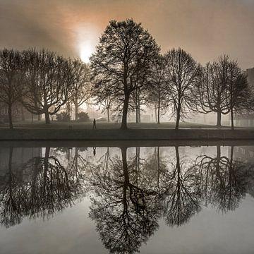 Morgensonne und Nebel am Kanal von Leeuwarden von Harrie Muis