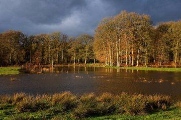 Fall and high water von Bert Broekhuis