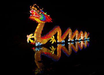 Reflection Dragon (Draak)