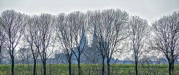 Vue de la Martinuskerk , Cuijk , Noord-Brabant sur Jeroen Hoogakker