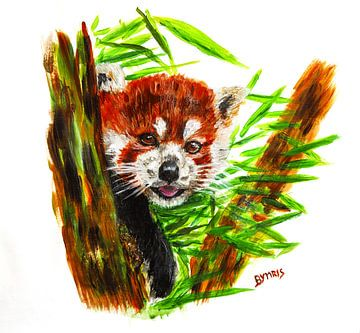 Roter Panda von Eye to Eye Xperience By Mris & Fred