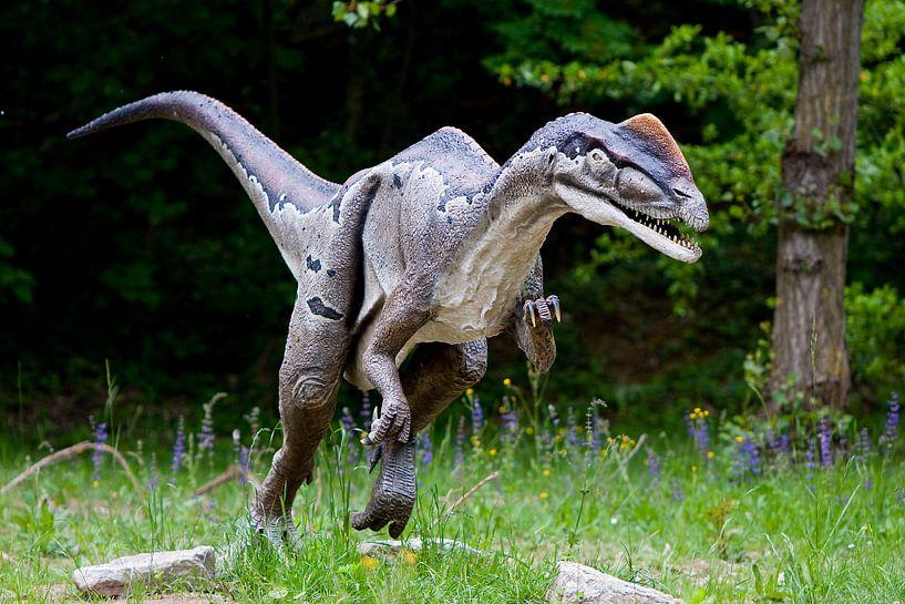 Dinosourus van Guido Akster