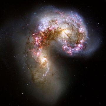 Hubble image of the Antennae galaxies van Brian Morgan
