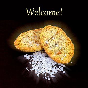 Welcome! van Leopold Brix
