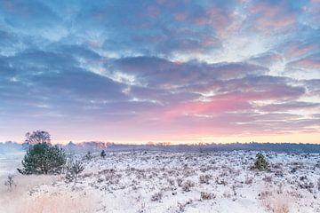 Magischer Sonnenaufgang Kampina von Ruud Engels