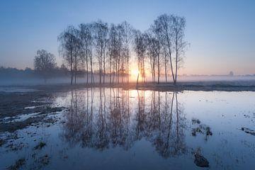 zonsopkomst van Arjan Keers