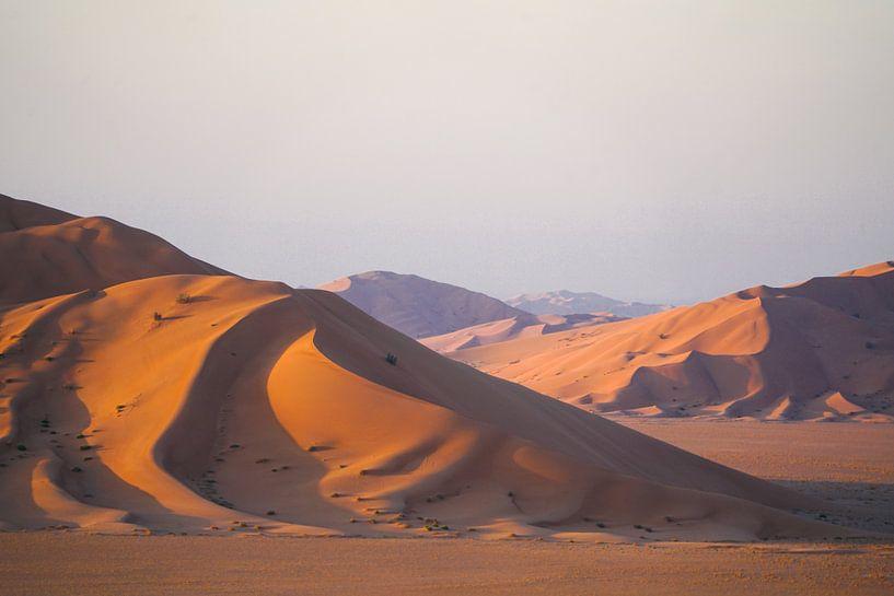 Woestijn: Zandduinen in Oman van The Book of Wandering