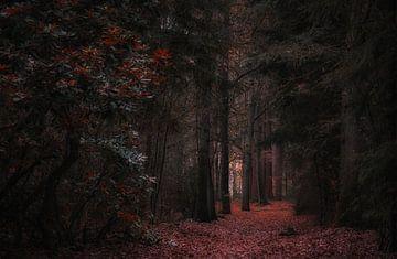 Autumn Dreams (2/4) van Remco Lefers