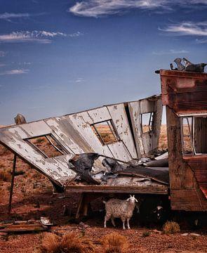 De geit en de caravan van SPOOR Spoor