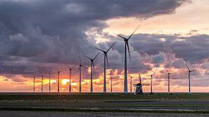 Mills at sunset