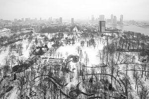 Winter in Het Euromastpark in Rotterdam van MS Fotografie