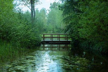 BRUGJE OVER WATER van Kelly Durieu