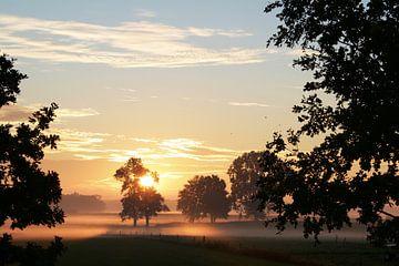 Magische zonsopkomst van Johan Michielsen