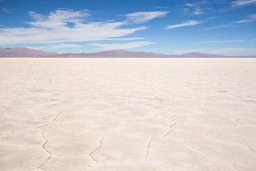 Zoutvlakte Salta (horizontaal) van Merijn Geurts