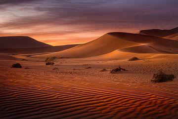 Sonnenaufgang in der Wüste von Peter Poppe