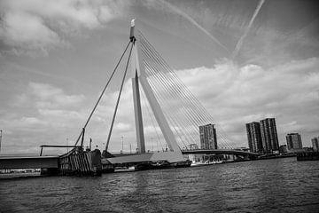 Rotterdam Erasmusbrug von Kas Den Elzen