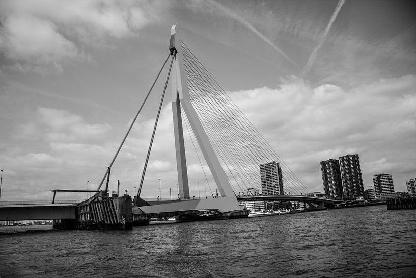 Rotterdam Erasmusbrug van Kas Den Elzen